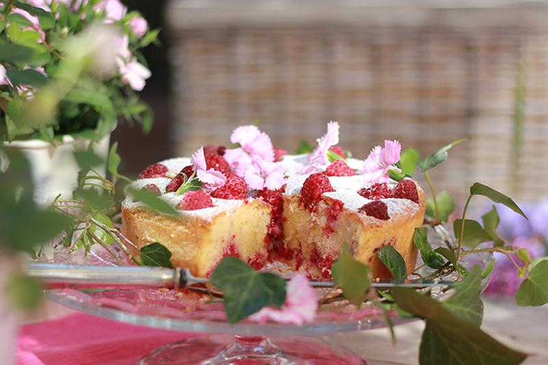 Cake_01_raspberries