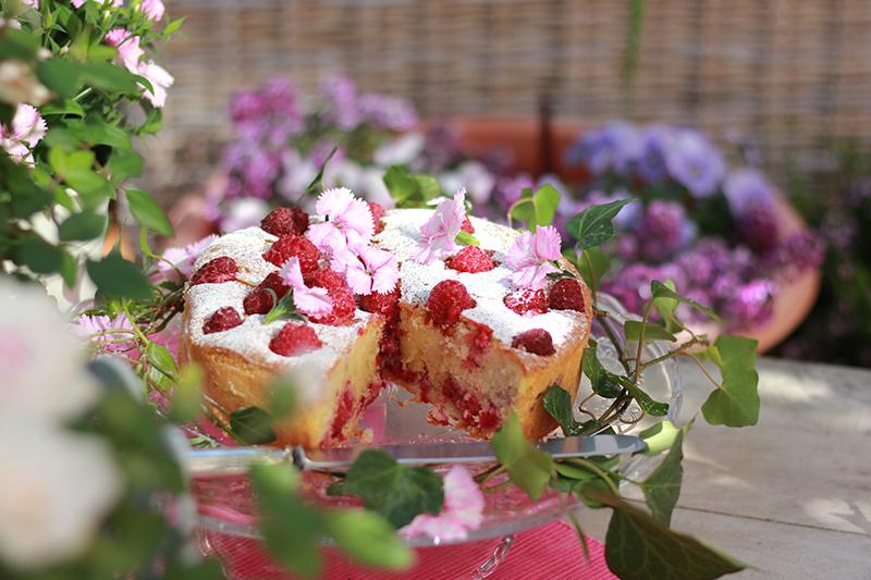 Cake_08_raspberries